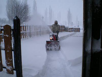 IMGP2147 - Como no nieve pronto ...