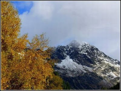 P1040531 redimensionar redimensionar redimensionar redimensionar - Otoño, nieve y color, Valle de Benasque en vivo.