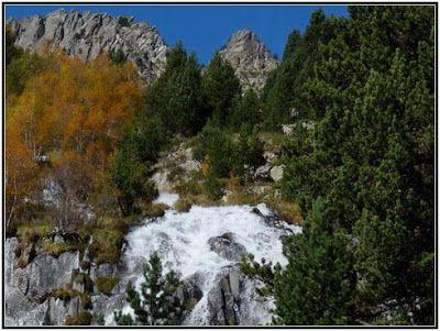 P1040549 redimensionar redimensionar redimensionar redimensionar - Otoño, nieve y color, Valle de Benasque en vivo.