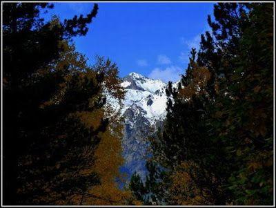 P1040589 redimensionar redimensionar redimensionar redimensionar - Otoño, nieve y color, Valle de Benasque en vivo.