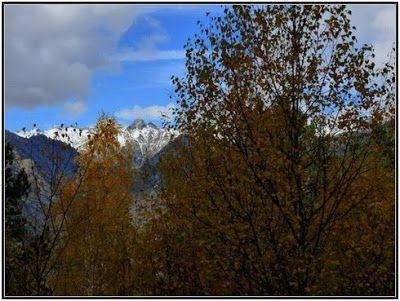 P1040593 redimensionar redimensionar redimensionar redimensionar - Otoño, nieve y color, Valle de Benasque en vivo.