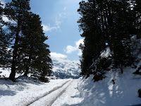 P1080853 - No se acaba el invierno mayo con nieve.