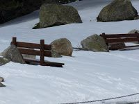 P1080875 - No se acaba el invierno mayo con nieve.
