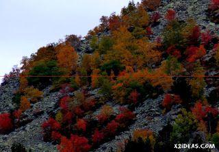 P1160037 - Veroño cerca de Castejón de Sos - Liri.