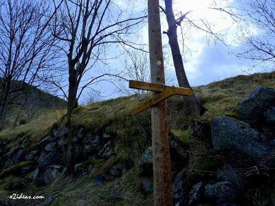 P1350436 - Solamente un paseo.