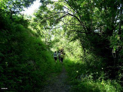 P1370481 - Ruta de las 3 Cascadas y Ardonés.