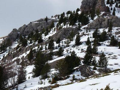 P1440056 - Sierra de Chía, de foqueo ... Valle de Benasque.