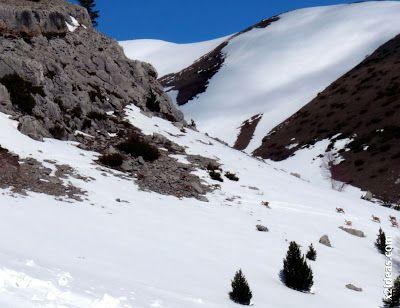 P1440078 - Sierra de Chía, de foqueo ... Valle de Benasque.