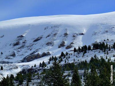 P1450252 - Gallinero después de nevar anoche.