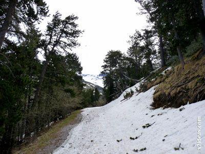 P1450369 - El pico Castanesa se me resiste.