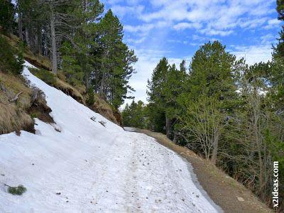 P1450370 - El pico Castanesa se me resiste.