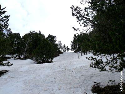 P1450393 - El pico Castanesa se me resiste.