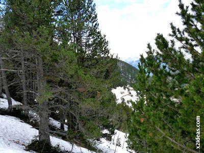 P1450394 - El pico Castanesa se me resiste.