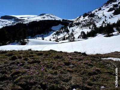 P1460172 - Pico Castanesa, 23/5/2013 repetimos ...