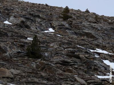 P1460477 - Seguimos esquiando ... a la espera a que mejore el tiempo.
