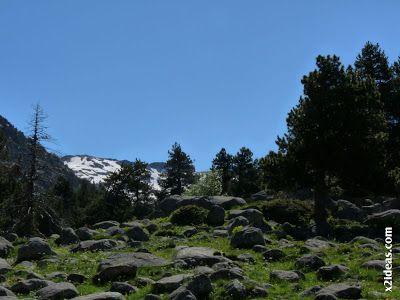 P1470324 - Ahora toca disfrutar del Valle de Benasque.