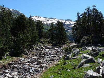 P1470354 - Ahora toca disfrutar del Valle de Benasque.