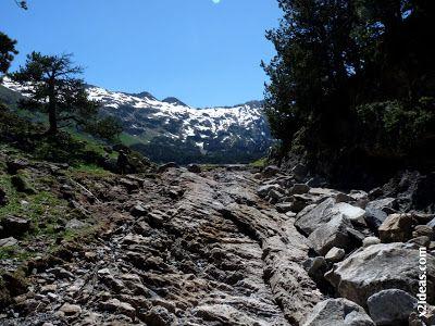 P1470358 - Ahora toca disfrutar del Valle de Benasque.