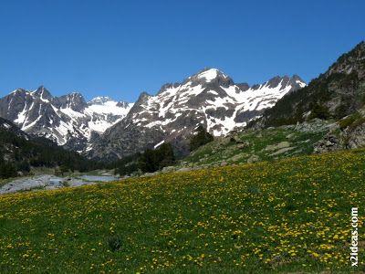 P1470416 - Ahora toca disfrutar del Valle de Benasque.