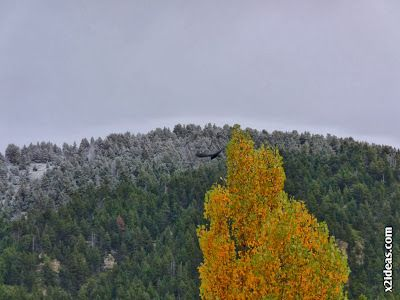 P1500265 - Cerler, noviembre, primera nevada.