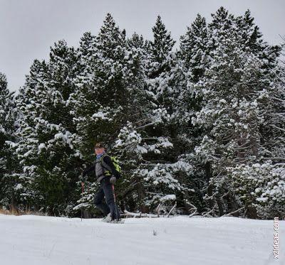 P1500411 - Cerler 2013-2014, la primera esquiada.