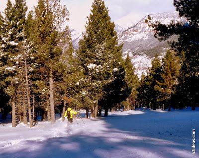 P1500733 - Sábado, Cerler y nieve ... a esquiar.