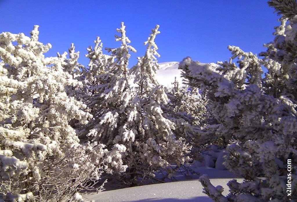 IMAG0280 1024x698 - 48. Esperando la nevada gorda en Cerler.