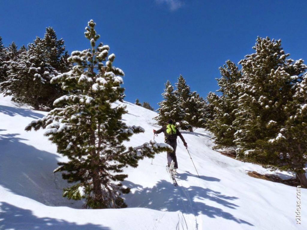 P1530482 1024x768 - Rincón del Cielo y Rabosa con nieve nueva.