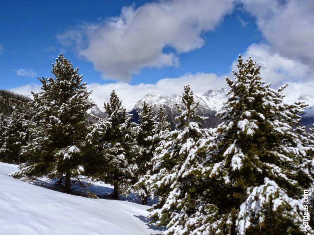 P1530484 1024x768 - Rincón del Cielo y Rabosa con nieve nueva.