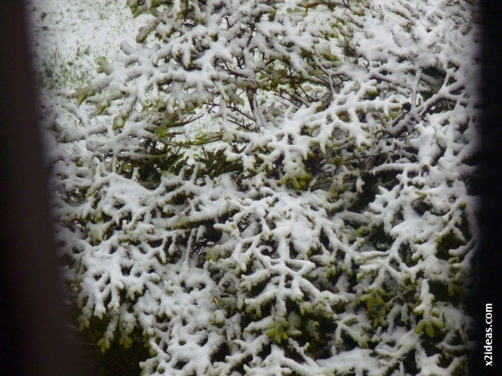 P1540796 1024x768 - Casi cerrando Mayo, con nieve en Cerler.
