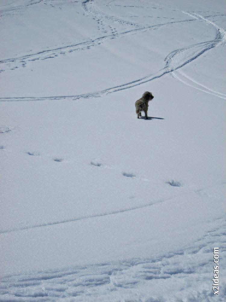 IMG 0115 - Esquiando en el Glaciar de Maladeta en junio.