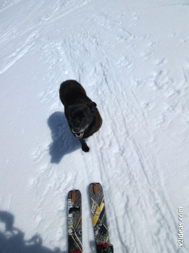 IMG 0117 - Esquiando en el Glaciar de Maladeta en junio.