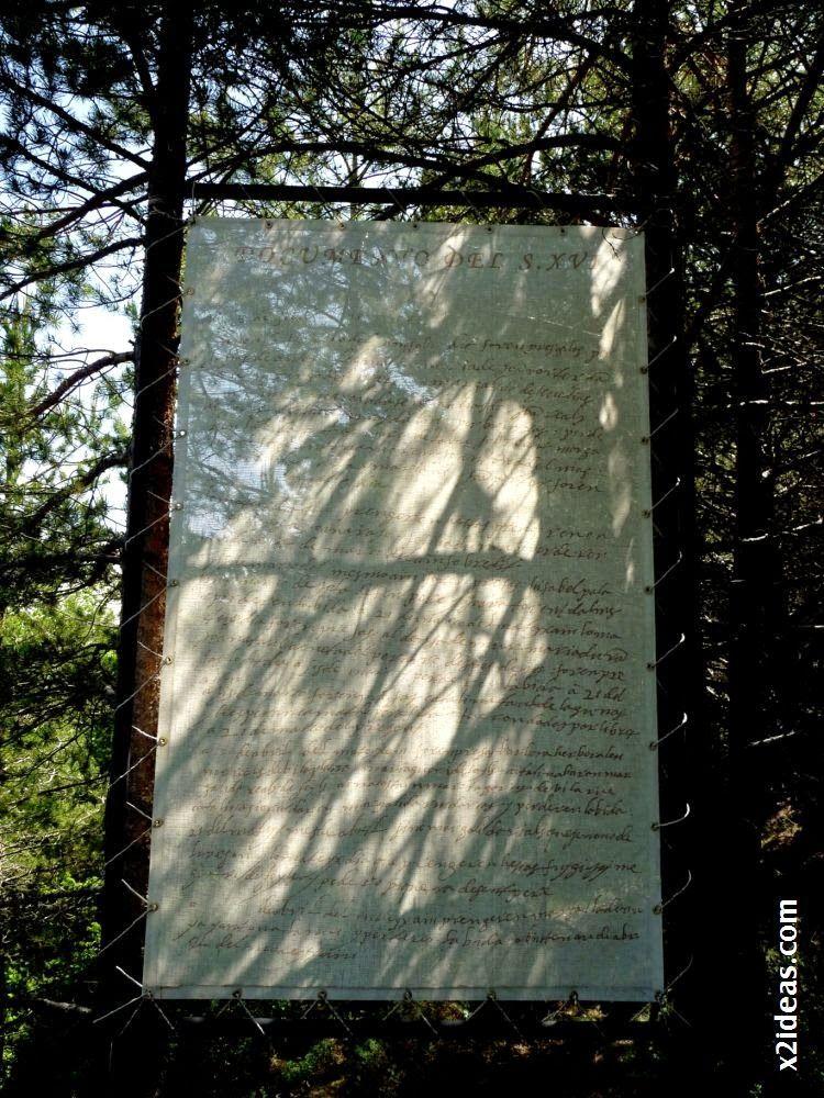 P1550122 - Bosque de Brujas, Laspaúles.