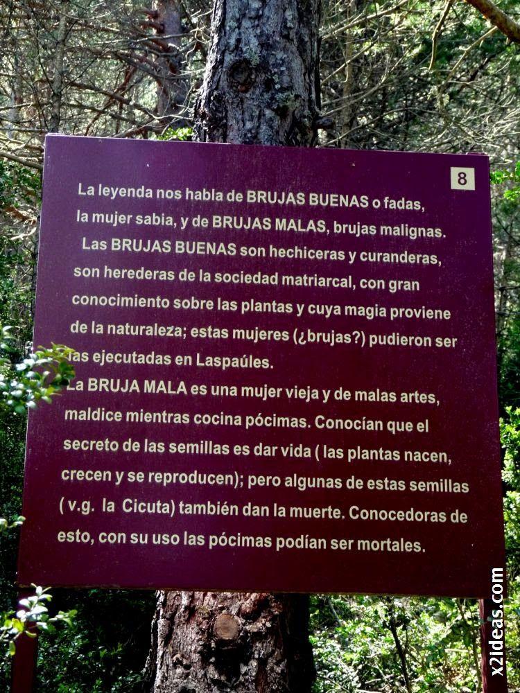 P1550131 - Bosque de Brujas, Laspaúles.