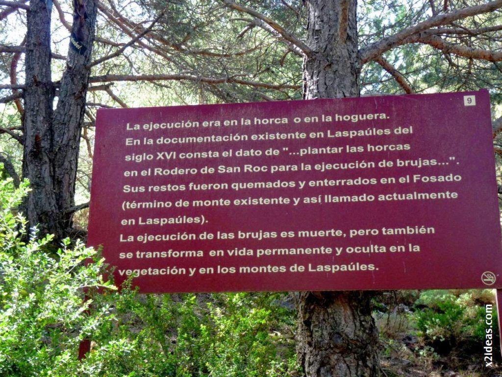 P1550139 1024x768 - Bosque de Brujas, Laspaúles.