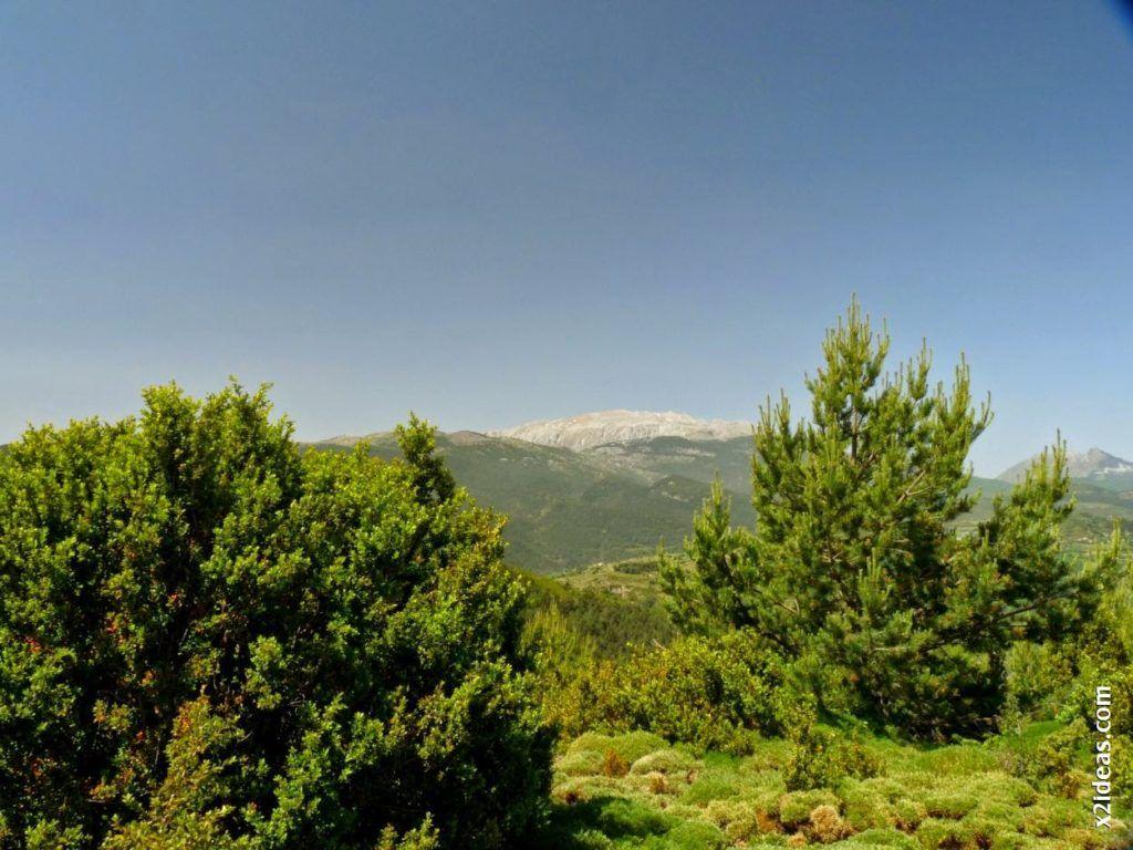 P1550149 1024x768 - Bosque de Brujas, Laspaúles.