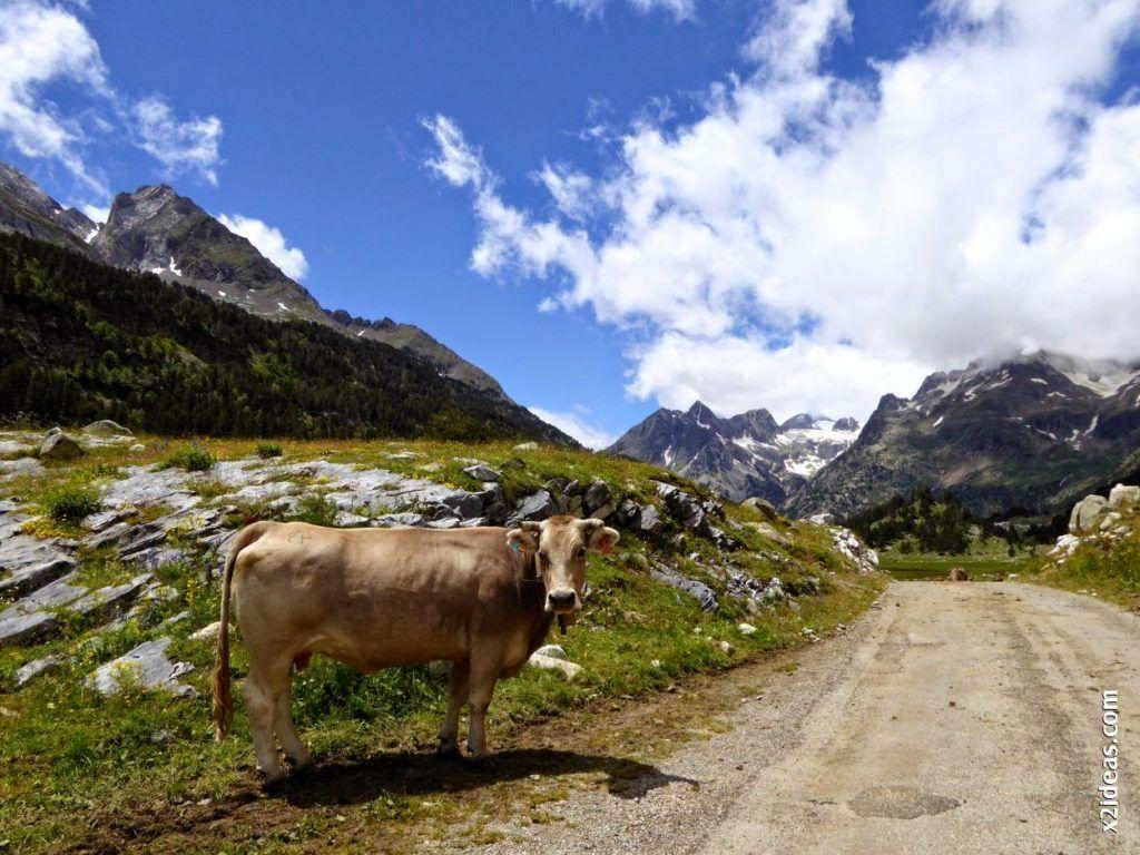 P1000658 1024x768 - Porteando camino a La Renclusa, Valle de Benasque, Pirineos.
