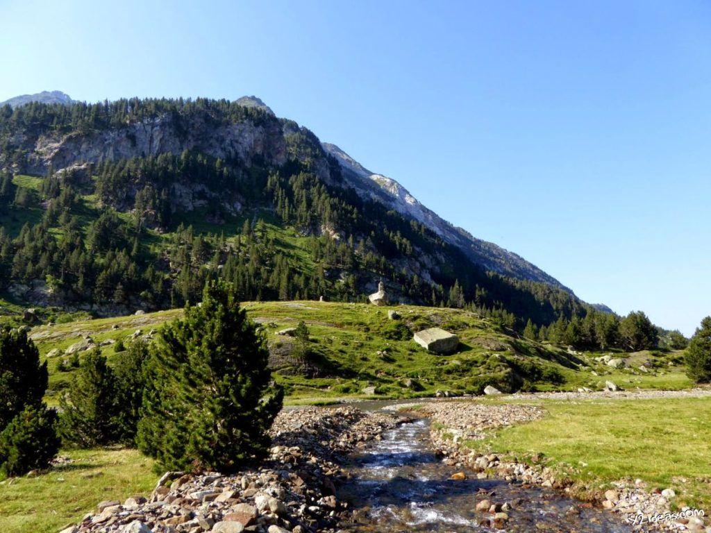 P1000838 1024x768 - Pues llegó el verano al Valle de Benasque, Pirineos.