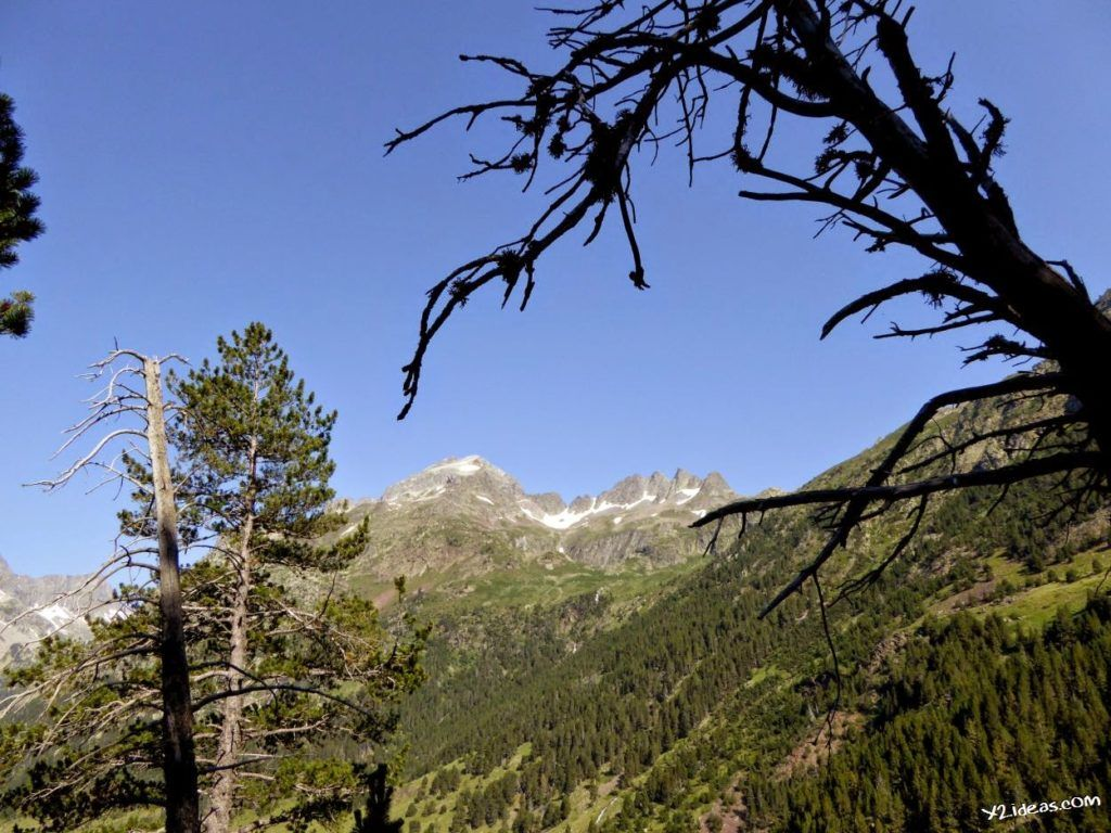 P1000839 1024x768 - Pues llegó el verano al Valle de Benasque, Pirineos.
