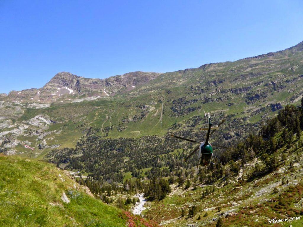 P1000851 1024x768 - Pues llegó el verano al Valle de Benasque, Pirineos.