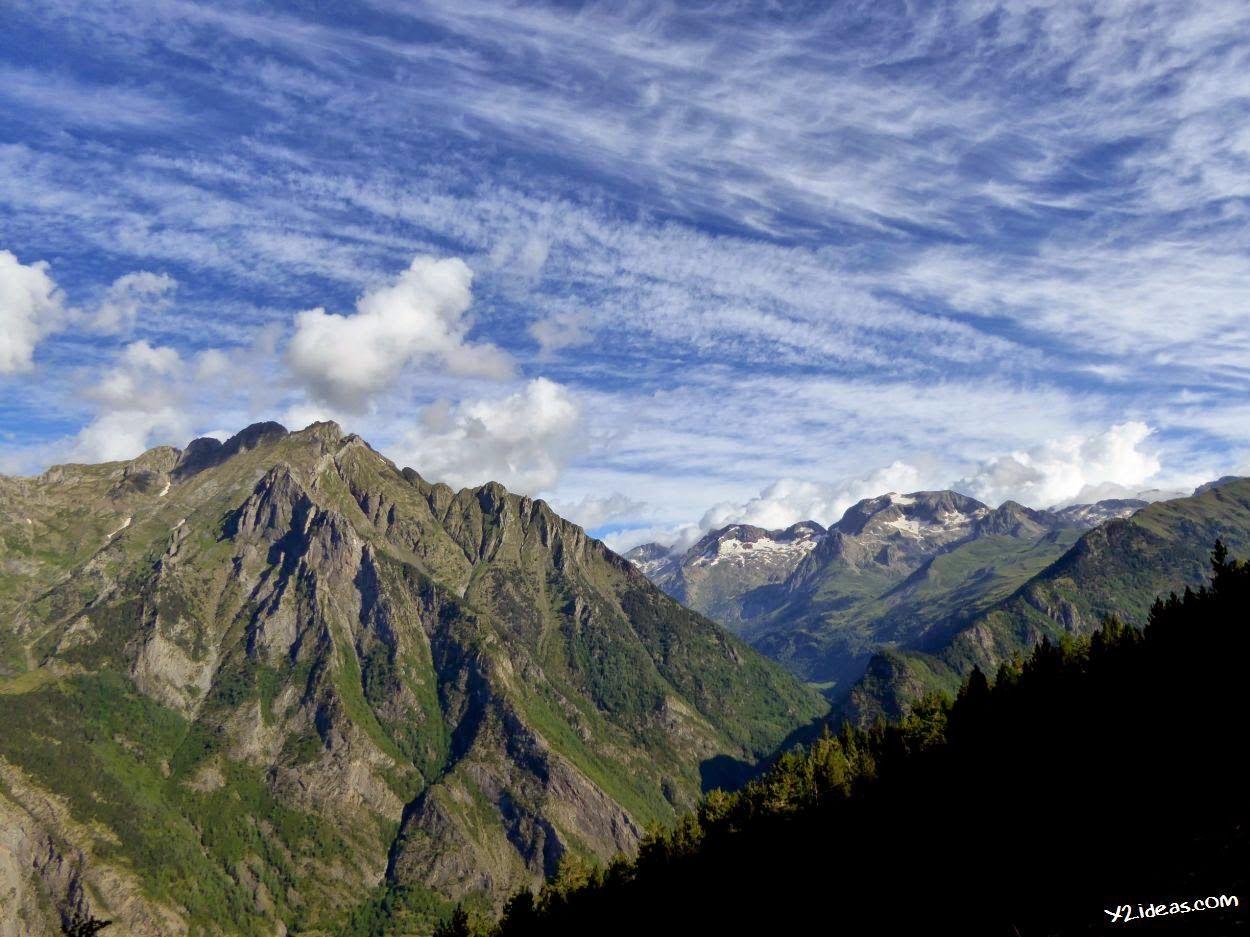 P1000934 2 - Sarrio pillado por el zoom, Valle de Benasque, Pirineos