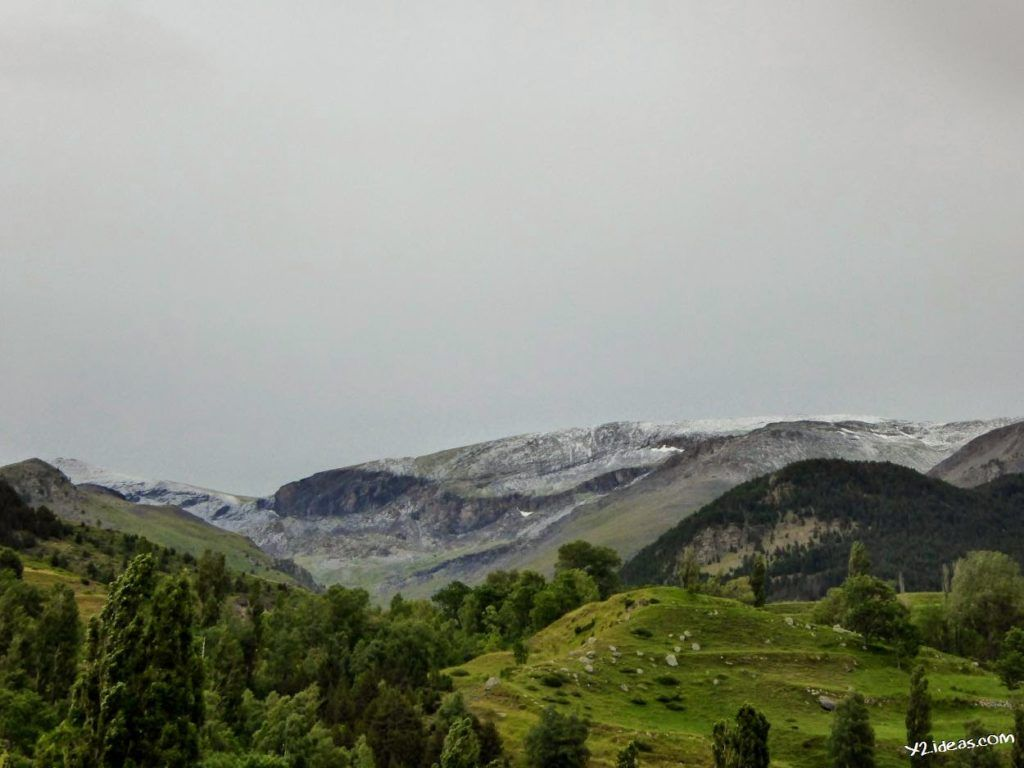 P1000949 1024x768 - Sarrio pillado por el zoom, Valle de Benasque, Pirineos