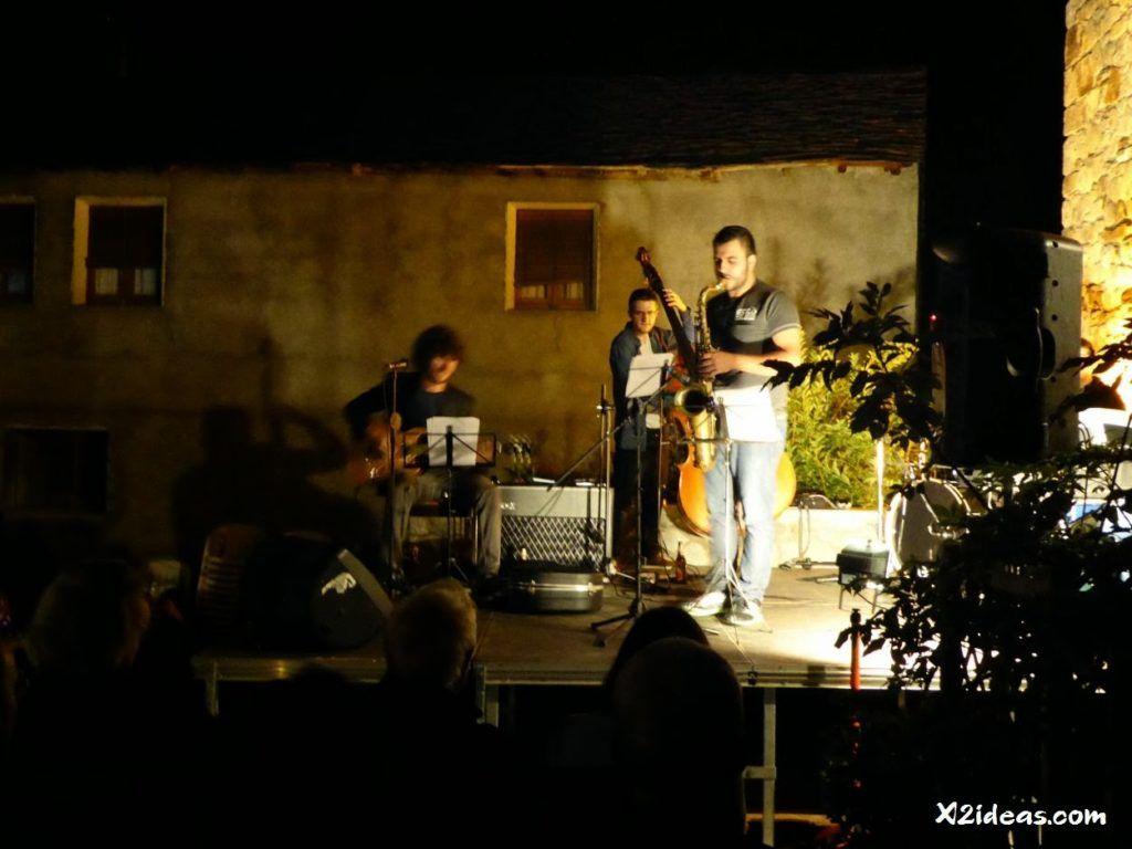 P1010663 1024x768 - Mientras recupero, flores y jazz  ... Valle de Benasque