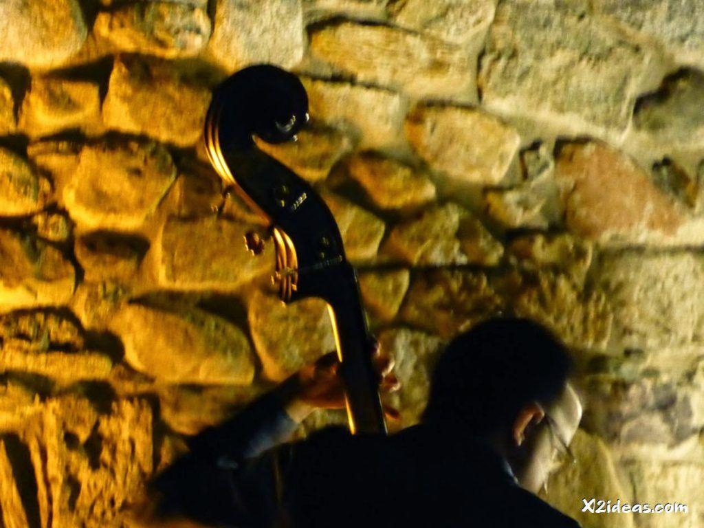P1010679 1024x768 - Mientras recupero, flores y jazz  ... Valle de Benasque