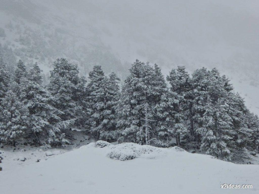P1040281 1024x768 - Noviembre empieza con nieve en Cerler y el Valle de Benasque.