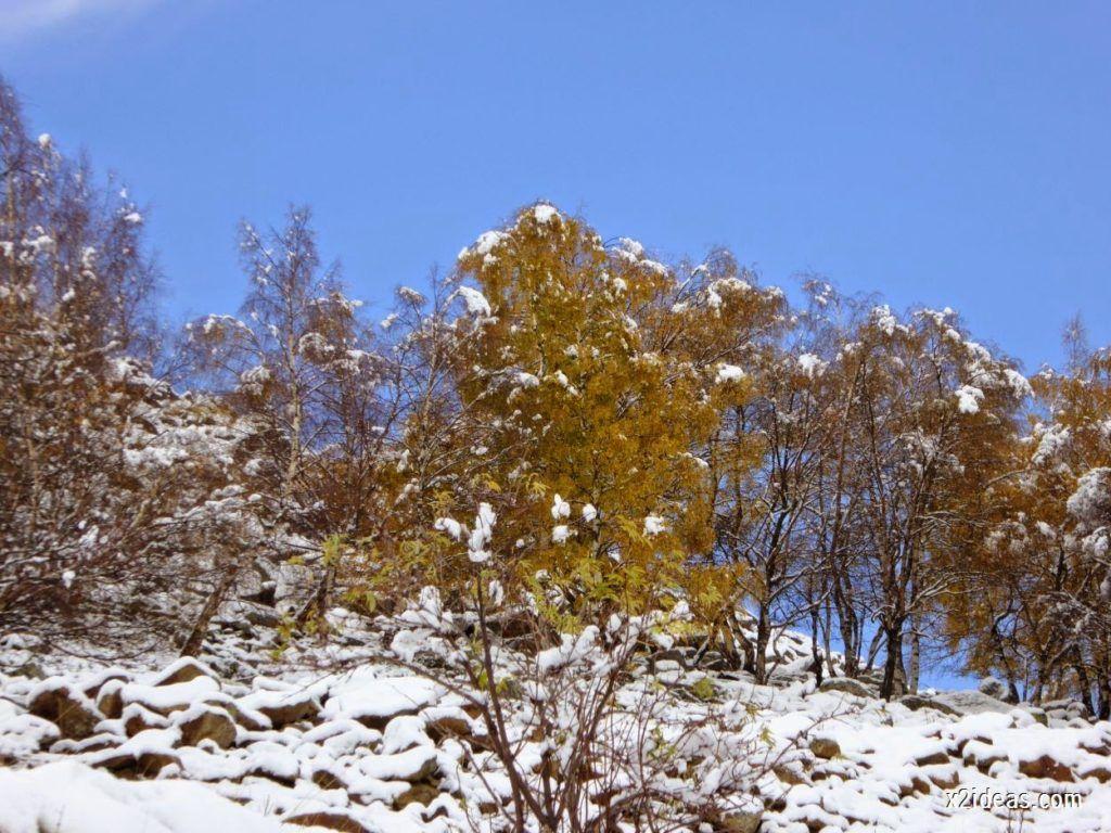 P1040345 1024x768 - Noviembre empieza con nieve en Cerler y el Valle de Benasque.