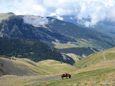 P1150636 - Pico Estibafreda 2702 m. en Cerler, Valle de Benasque (Pirineos)