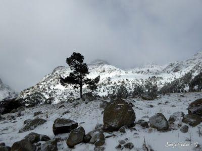 P1180138 - La primera esquiada, La Besurta (Valle de Benasque)