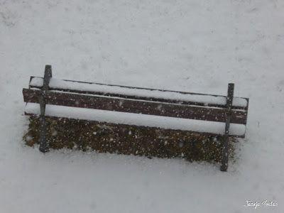 P1210291 - Día completo, nevando en Cerler.