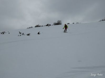 P1210711 - Chía con MasPirineo, es mucha sierra. Valle de Benasque
